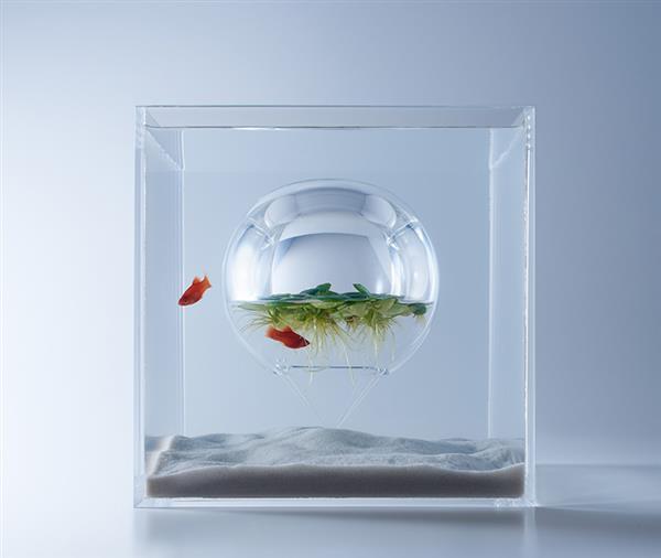 haruka-misawa-3d-printed-aquascapes-wish-fish-12