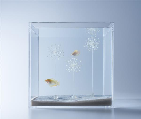 haruka-misawa-3d-printed-aquascapes-wish-fish-9